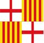 barcelona fanàtics